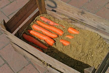 Как сделать погреб в песке
