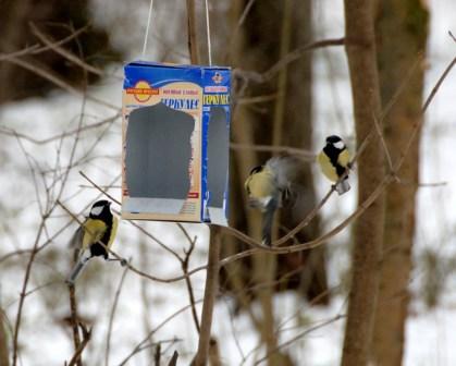 Кормушки для птиц из картона