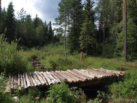 мост из бревна на дачной территории: для пересечения оврага, реки, сухого ручья