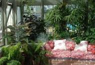 Создаем своими руками зимний сад на балконе