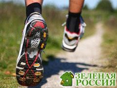 Требования гигиены к спортивной обуви