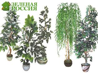 Преимущества искусcтвенных деревьев и цветов