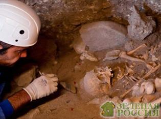 Археологи нашли паразитов в могиле ребенка, жившего 6000 лет назад