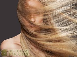 Волосы как отражение нашей личности