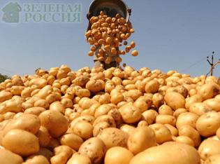 Сельскохозяйственные новости России  - уборка урожая