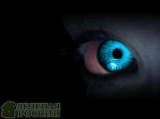 Ученые рассказали, как научиться видеть в темноте