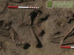 Древние «понаехавшие» обогатили европейцев