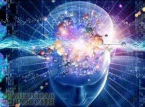 Нейрофизиологи из Канады обнаружили молекулу, которая тормозит деятельность мозга