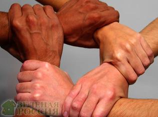 Американские ученые предложили уменьшить число друзей