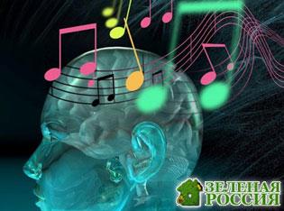 Увлечение музыкой положительно влияет на мозг