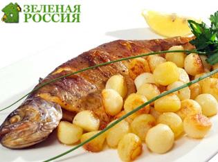 Ученые назвали картошку и рыбу смертельно опасными продуктами