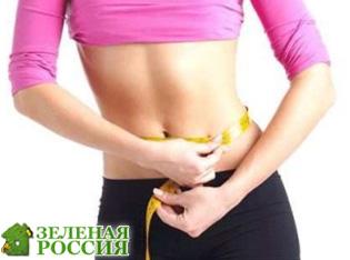 Диетологи опубликовали способы похудения для ленивых – видео инструкция