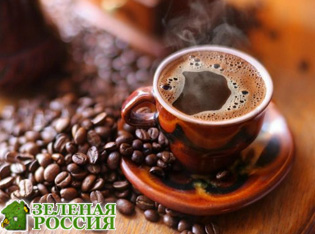Люди останутся без кофе к 2080 году