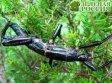 В зоопарке Сан-Диего разводят «редчайшее насекомое в мире»