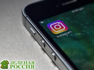 Instagram удалил более 300 ссылок с информацией о «группах смерти»
