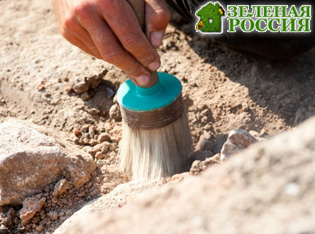 Археологи нашли в Китае череп неизвестного ранее вида человека