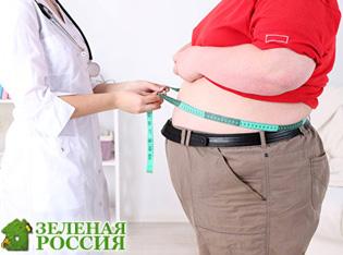Российские ученые выяснили, как связаны ожирение и воспаление