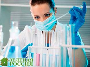 Ученые из РФ доказали, что наночастицы лекарств могут проникать в легкие