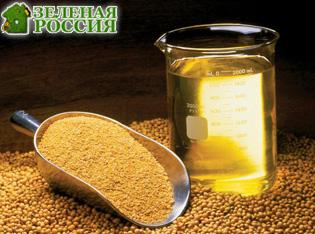 Ученые выяснили, как масло из ГМО-сои вредит и помогает организму