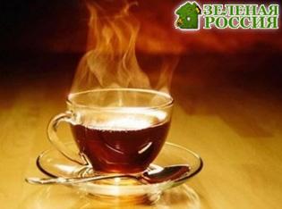 Учёные доказали, что горячий чай в 5 раз повышает риск рака пищевода