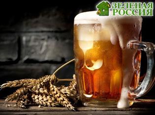 Люди лишатся дешевого пива из-за глобального потепления