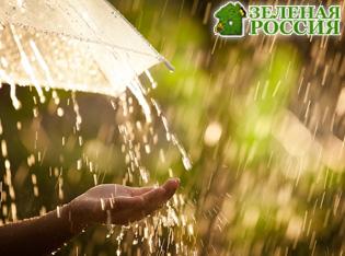 Пластиковый дождь гораздо опаснее кислотного