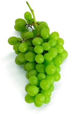 на виноград бывает аллергия